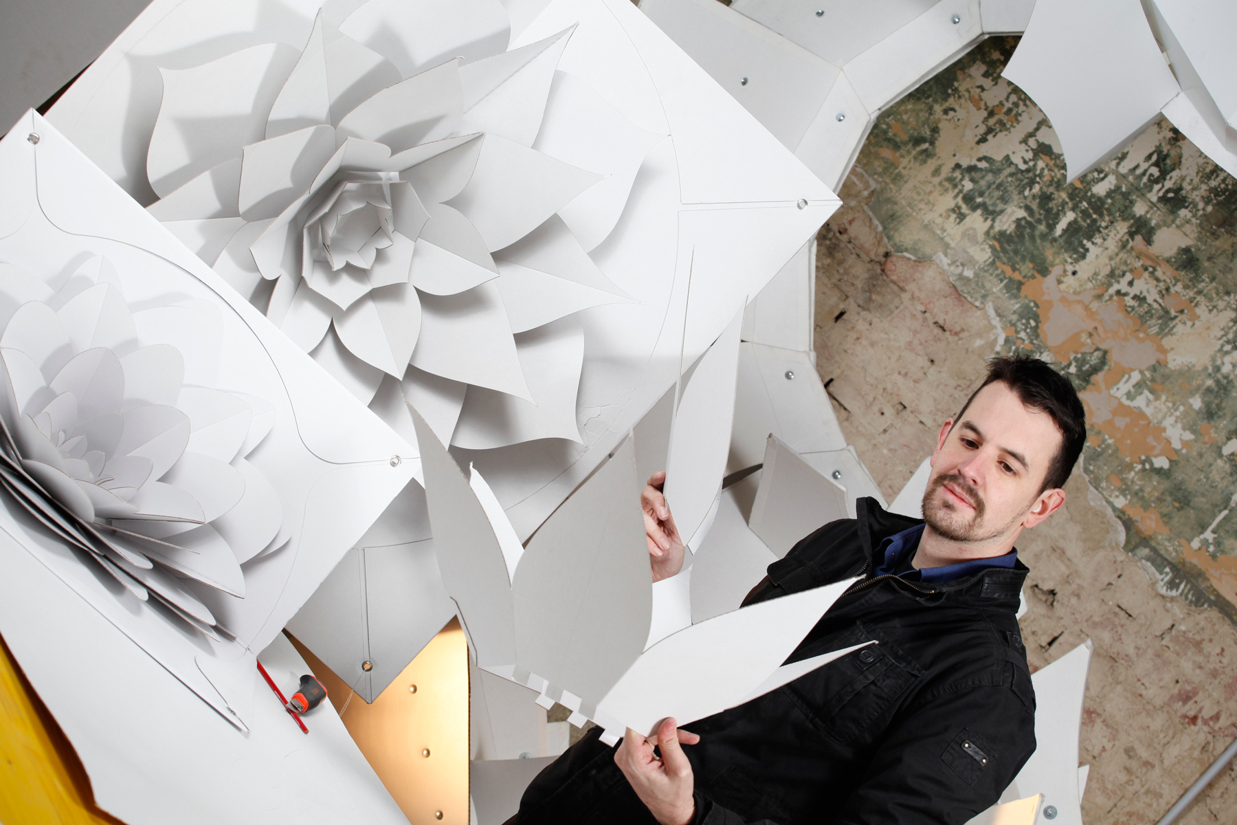 A business made of cardboard