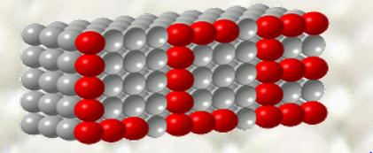 LCE – Lösch Cellular Engineering