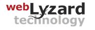 webLyzard technology gmbh