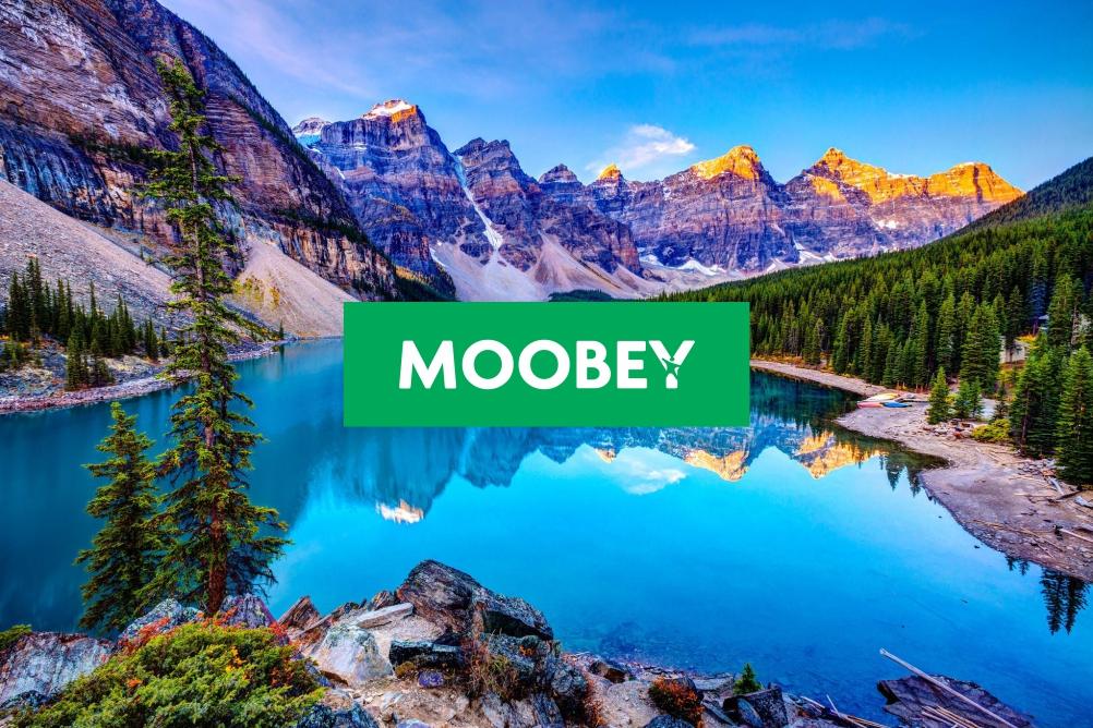 Moobey